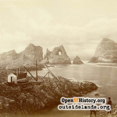 South Farallon Island, 1871