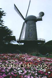 Dutch Windmill, September 2001